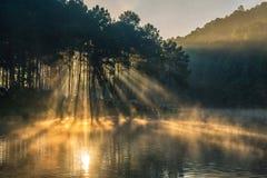 早晨在剧痛Ung湖,在泰国北部 库存照片