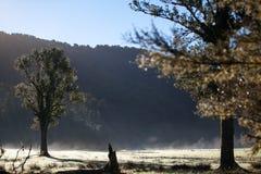 早晨在山的场面视图 免版税库存照片