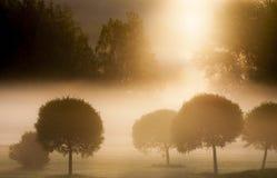 早晨在高尔夫球场 免版税库存照片