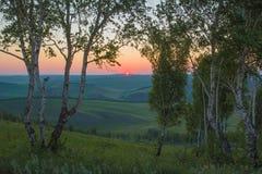 早晨夏天风景 1257座高米山山波兰skrzyczne日出视图 西伯利亚的本质 免版税库存图片