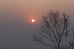 早晨太阳在夏天和山 库存图片