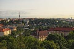 早晨布拉格风景  树的一个巨大数目部分地掩藏房子 首都布拉格视图 免版税库存图片