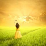 早晨放松绿色米领域和日落的妇女 免版税库存图片