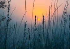 早晨日出横向 库存照片