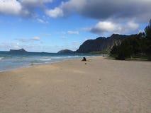 早晨时间夏威夷 库存图片