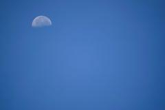 早晨月亮 库存照片