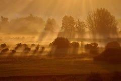 早晨有薄雾的风景 库存照片