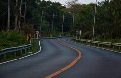 早晨有黄色条纹的弯曲道路在密林 库存照片
