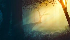 早晨森林读书 免版税图库摄影