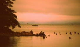 早晨渔在俄勒冈 库存照片