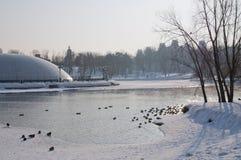 早晨莫斯科tsaritsino冬天 库存图片