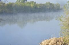 早晨薄雾的一条安静的河 库存图片