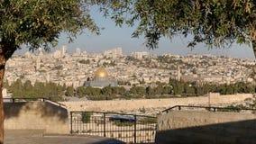 早晨被射击橄榄树构筑的岩石的圆顶在耶路撒冷 图库摄影