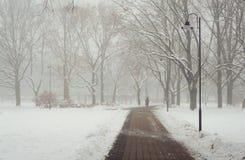 早晨雪霭在城市公园 库存照片