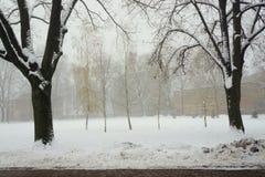 早晨雪霭在城市公园 库存图片