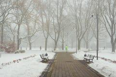 早晨雪霭在城市公园 图库摄影