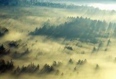 早晨雾和日出鸟瞰图在秋天在Stowe附近, VT在风景路线100 库存图片