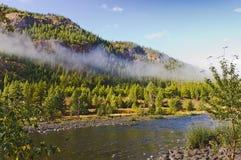 早晨雾垂悬在山小河 库存图片