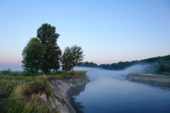 早晨雾看起来象桥梁 图库摄影