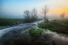 早晨 在一条美丽如画的河附近的有雾的黎明 库存图片