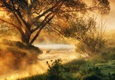 早晨 在一条美丽如画的河附近的黎明 免版税图库摄影