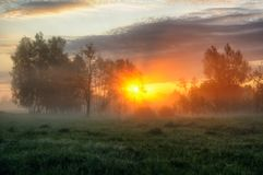 早晨 有薄雾的黎明在一个美丽如画的草甸 太阳光芒 免版税库存照片