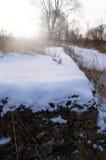 早晨晴朗的冬天 库存照片
