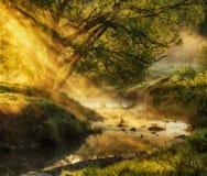 早晨 由河的美丽如画的有雾的黎明 太阳光芒 免版税库存图片