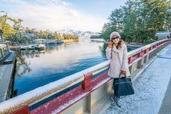 早晨Amanohashidate转动的桥梁在冬天 免版税库存照片
