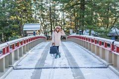早晨Amanohashidate转动的桥梁在冬天 免版税库存图片