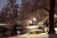 早期的冬天早晨在城市公园 库存图片