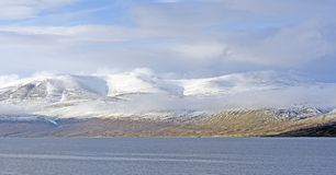 早期的冬天雪在高北极 库存图片