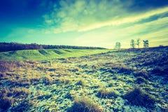 早期的冬天领域葡萄酒照片  免版税库存图片