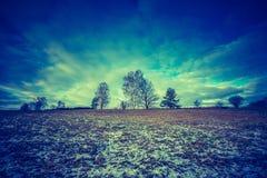 早期的冬天领域葡萄酒照片  免版税图库摄影