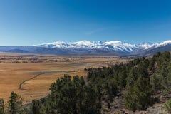 早期的在内华达山山的春天高山风景 库存照片