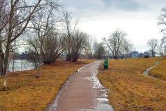 早期的春天公园 库存照片