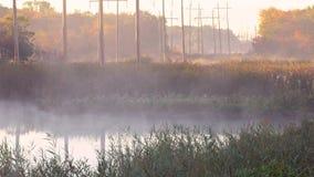 早期的有薄雾的早晨射击 股票视频