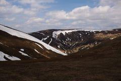 早期的横向山春天 喀尔巴汗,乌克兰,欧洲 库存图片