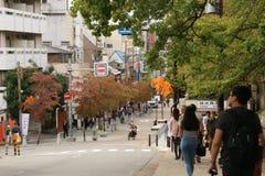 早期的秋天在奈良 免版税库存图片