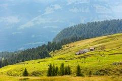 早期的秋天在阿尔卑斯,瑞士 库存图片