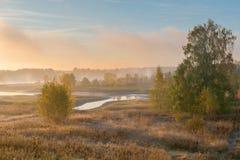 早期的秋天早晨 库存照片