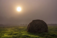 早期的秋天早晨 图库摄影