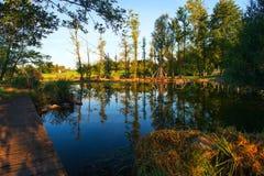 早期的秋天的反射在蓝色湖 库存图片