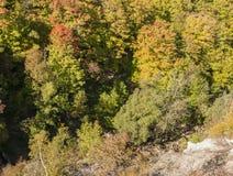 早期的秋天谷 库存图片