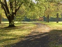 早期的秋天路径 库存照片