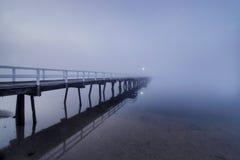 早期的雾早晨 库存照片
