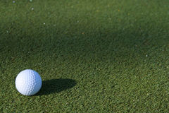 早期的高尔夫球绿色早晨 免版税库存图片
