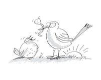 早期的鸟捉住蠕虫 库存照片