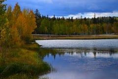 早秋天天空和树水反射 免版税库存照片