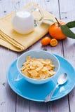 早餐健康的玉米片 图库摄影